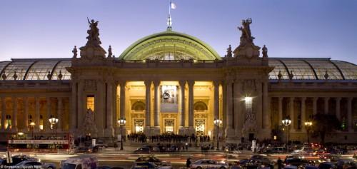 Grand Palais paris FIAC