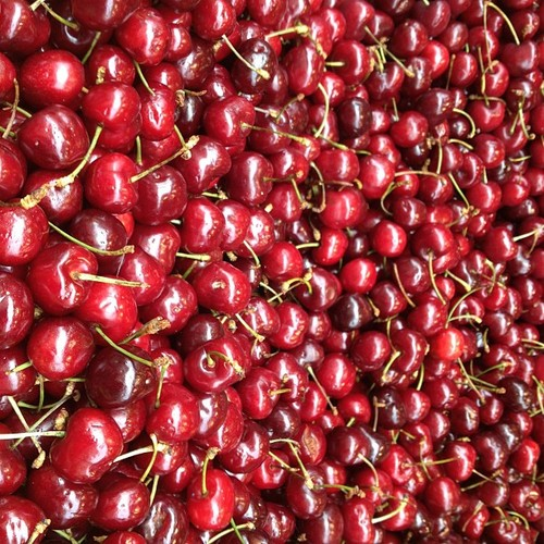 red cherries paris