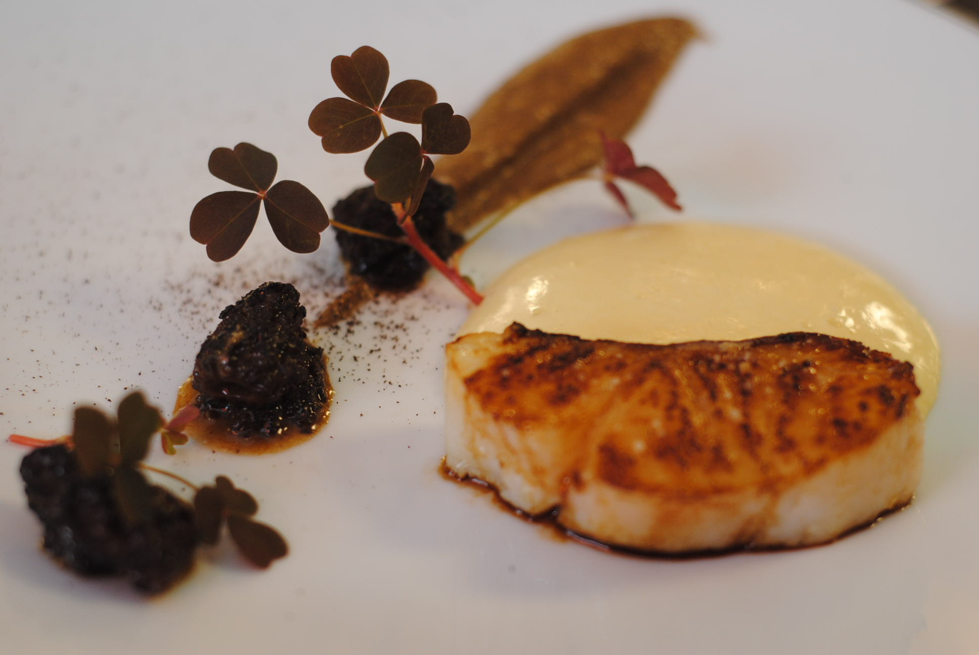 Dinner in Paris: Loiseau Rive Gauche, 5 Rue de Bourgogne, 75007 - My ...