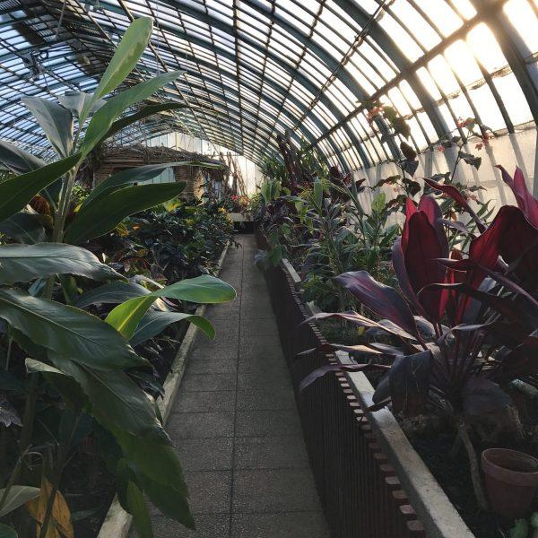 Garden Jardin des Serres d'Auteuil